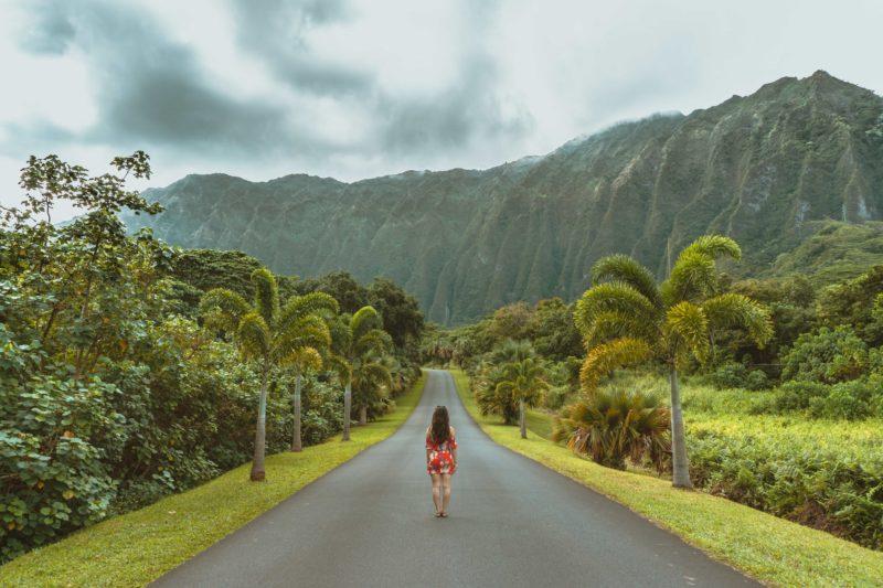 Hawaii State Loan Repayment Program 1