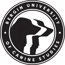 Bergin University of Canine Studies